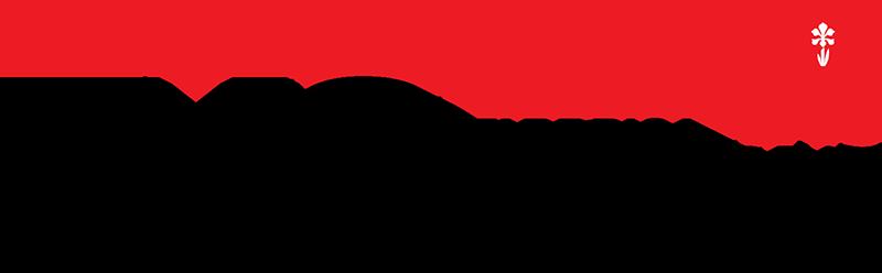 logo-fmg